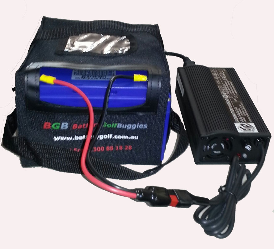 lithium bgb lifepo4 12 8v 30ah golf battery 5a automatic lithium charger ebay. Black Bedroom Furniture Sets. Home Design Ideas
